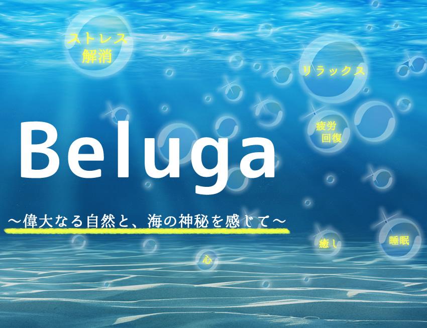 Beluga 偉大なる自然と、海の神秘を感じて